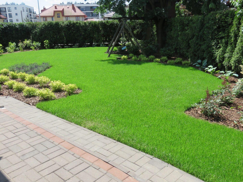 8a nowy trawnik i rabaty przy huśtawce