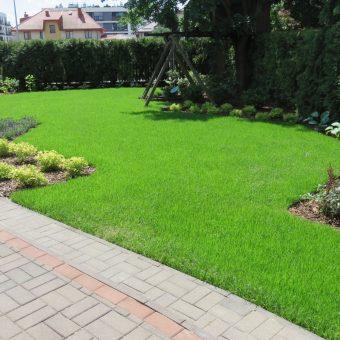 Nowy trawnik i rabaty przy huśtawce