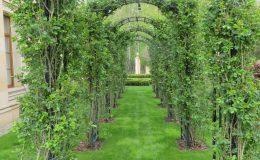 Konstancin Francuski ogród (12)