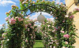 Konstancin Francuski ogród (20)