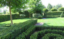 Konstancin Francuski ogród (21)