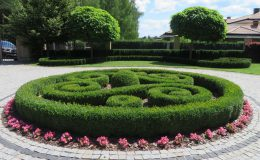 Konstancin Francuski ogród (23)