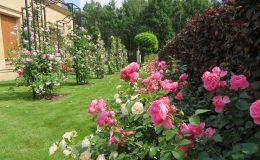 Konstancin Francuski ogród (4)