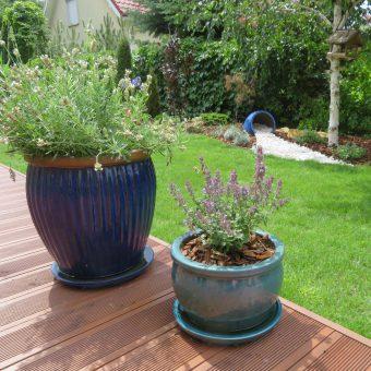 Ogród śródziemnomorski – Józefów