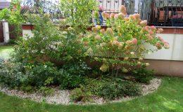 Ogród formalny Wilanów (25)