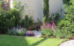 Ogród formalny Wilanów (29)