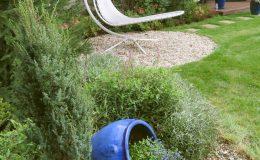 Ogród formalny Wilanów (7)