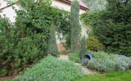Ogród formalny Wilanów (8)