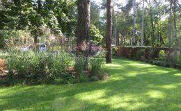 – Ogród leśny Józefów F (10)