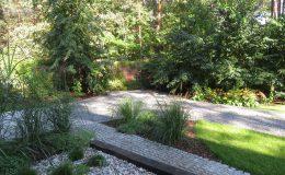 – Ogród leśny Józefów F (20)