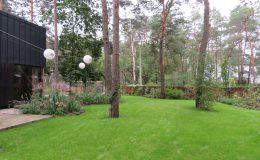 – Ogród leśny Józefów F (23)