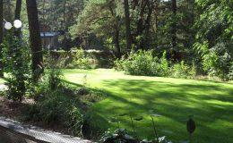 – Ogród leśny Józefów F (24)