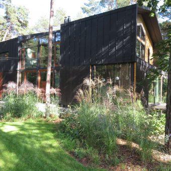 Ogród leśny z nowoczesnym domem – Józefów