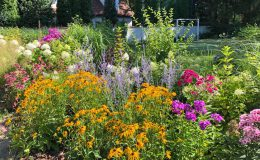 Ogród przy boisku Emów 30 (1)
