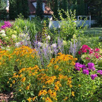 Ogród przy boisku – Emów