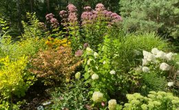 Ogród przy boisku Emów 30 (3)