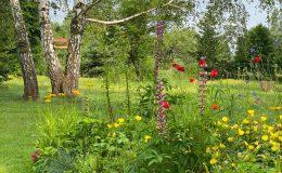 Ogród wiejski Chata Wandy Brzeźce (3)