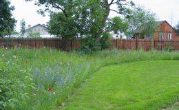 Ogród wiejski Chata Wandy Brzeźce (5)