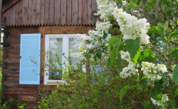 Ogród wiejski Chata Wandy Brzeźce (6)