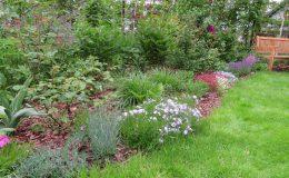 Ogród ze świdermajerem (17)