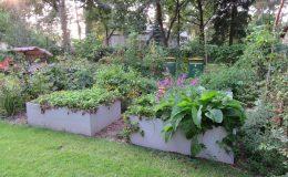 Ogród ze świdermajerem (19)