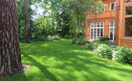 Ogród ze świdermajerem (2)