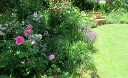 Ogród ze świdermajerem (23)