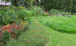 Ogród ze świdermajerem (24)