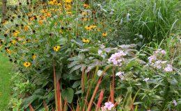 Ogród ze świdermajerem (25)