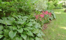 Ogród ze świdermajerem (27)