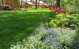 Ogród ze świdermajerem (3)