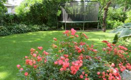 Ogród ze świdermajerem (36)