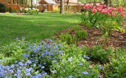 Ogród ze świdermajerem (40)