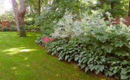 Ogród ze świdermajerem (42)