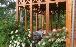 Ogród ze świdermajerem (5)
