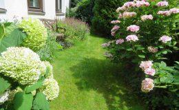 Pyry – ogród angielski (21)