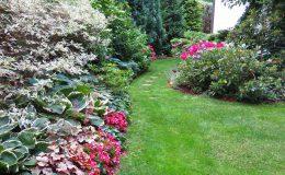 Pyry – ogród angielski (23)