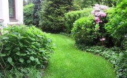 Pyry – ogród angielski (25)