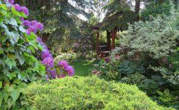 Pyry – ogród angielski (32)