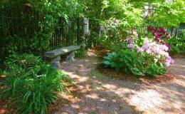 Tajemniczy ogród Sadyba (1)