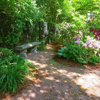 Tajemniczy ogród – Sadyba