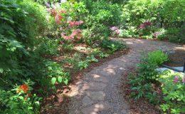 Tajemniczy ogród Sadyba (2)