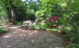 Tajemniczy ogród Sadyba (3)