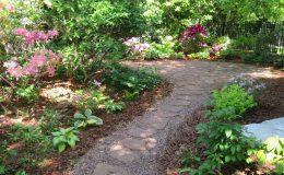 Tajemniczy ogród Sadyba (4)