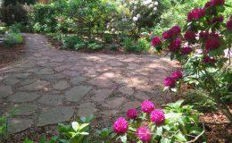 Tajemniczy ogród Sadyba (5)