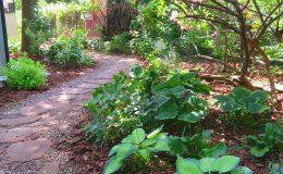 Tajemniczy ogród Sadyba (7)