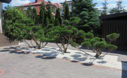 ogród Wawer (12)