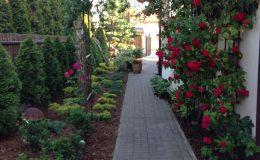 ogród Wawer (17)