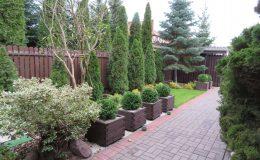 ogród Wawer (21)