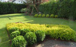 ogród Wawer (3)